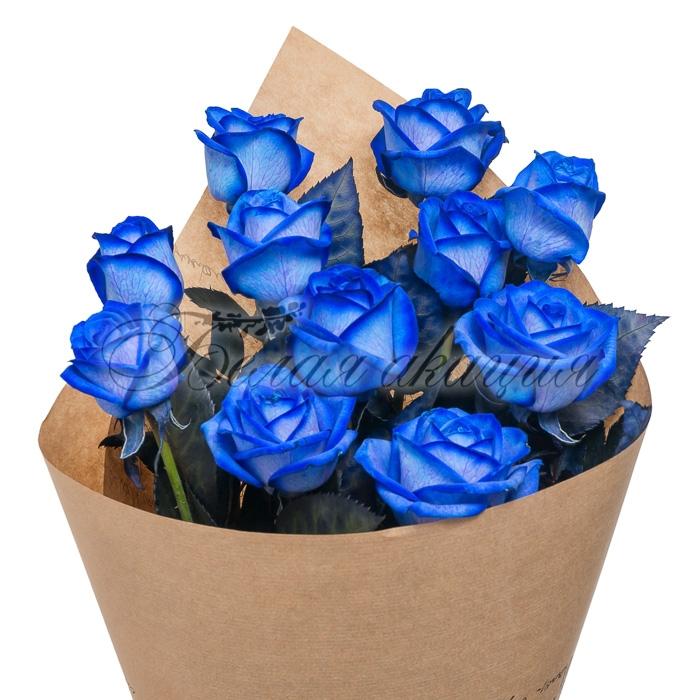 Купить черные розы в новосибирске на улице достоевского тимирязевская академия, купить цветы