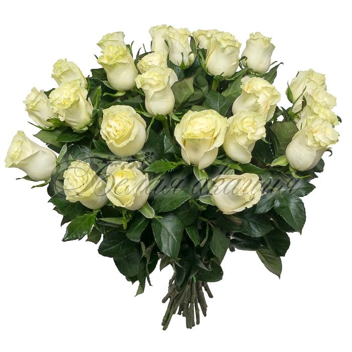 Сколько будет стоить букет из 21 розы с доставкой — photo 6