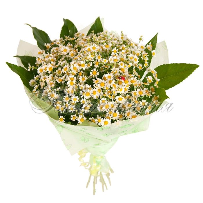 FRESH   Доставка цветов 1 в Новороссийске