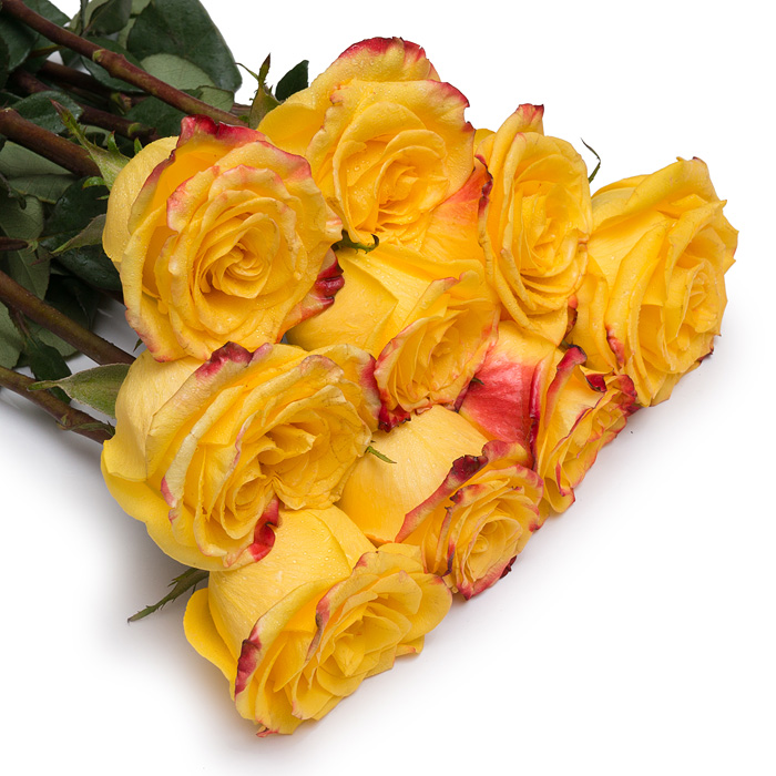 Что означают желтые розы в подарок девушке 25
