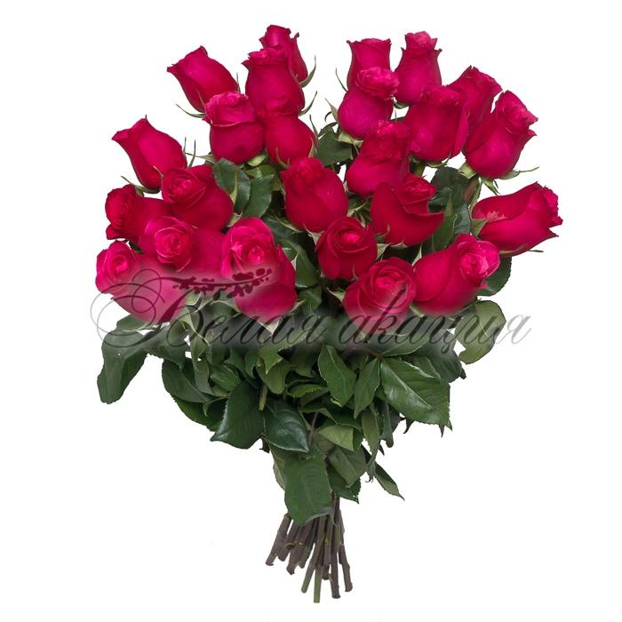 Розы дёшево новосибирск