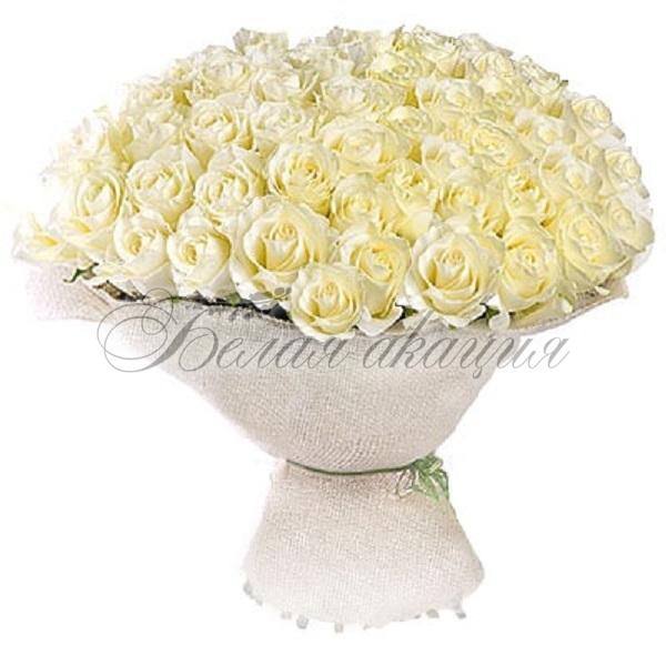 Белая акация цветы новосибирск